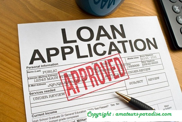 What Are Loans To Individuals