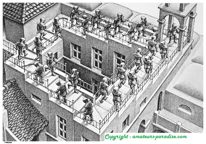 Con-Science Project Escher