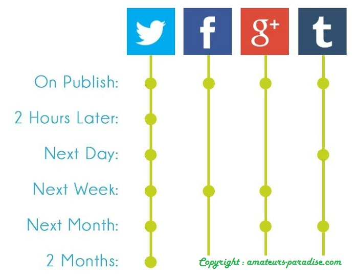 When Can Your Company  Automate Social Media Posts
