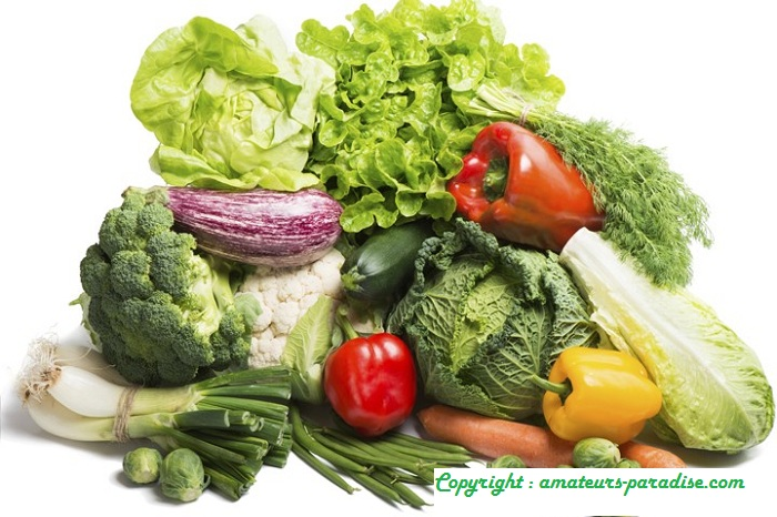 Diet For Headaches , Diet For Migraines