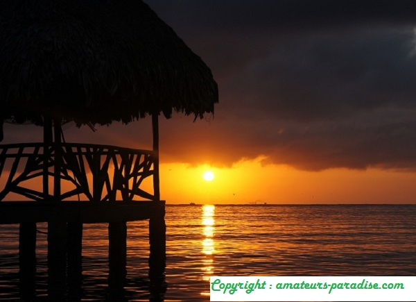 FijiFIJI - VALERY SHANIN