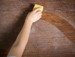 eliminate dust from home